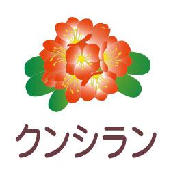 クンシランのピクトサイン 花/植物のピクト