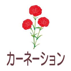 カーネーションのピクトサイン 花/植物のピクト