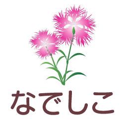 なでしこのピクトサイン 花/植物のピクト