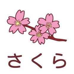 さくらのピクトサイン 花/植物のピクト