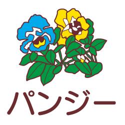 パンジーのピクトサイン 花/植物のピクト