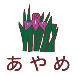 あやめのピクトサイン 花/植物のピクト