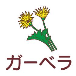 ガーベラのピクトサイン 花/植物のピクト