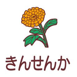 きんせんかのピクトサイン 花/植物のピクト