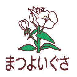 まつよいぐさのピクトサイン 花/植物のピクト