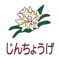 じんちょうげのピクトサイン 花/植物のピクト